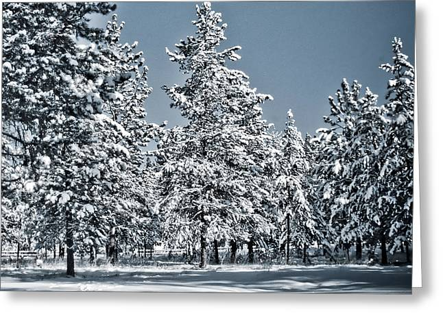 Greeting Card featuring the photograph Montana Christmas by Janie Johnson