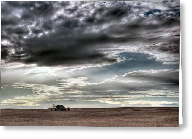 Montana Grasslands Greeting Card by Leland D Howard