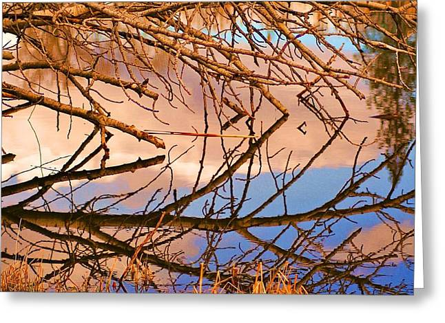 Montana Peace Pond IIi Greeting Card by William Kelvie