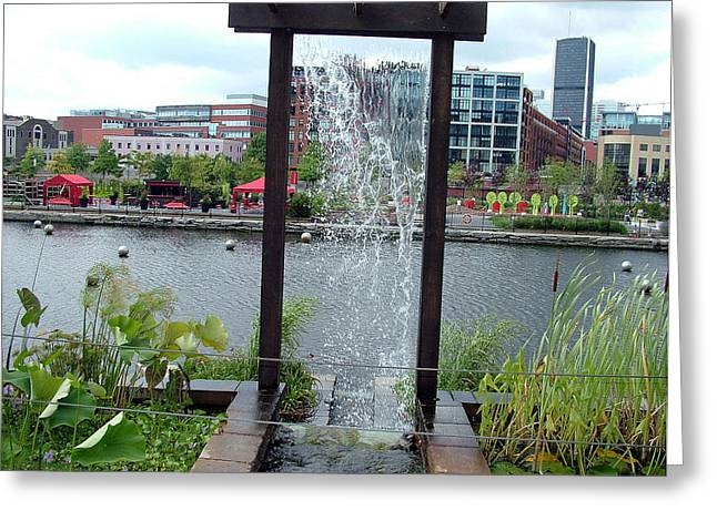 Greeting Card featuring the photograph Montreal Expoflora by Vicky Tarcau