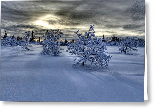 Greeting Card featuring the photograph Moody Snow Scene by Michele Cornelius
