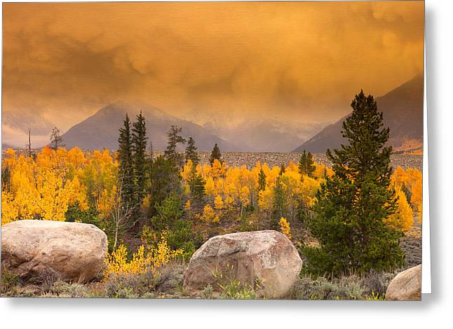 Moody Greeting Card by Tim Reaves