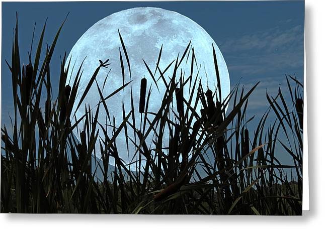 Moon And Marsh Greeting Card