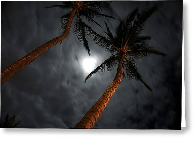 Moon And Palms Greeting Card by George Crawford