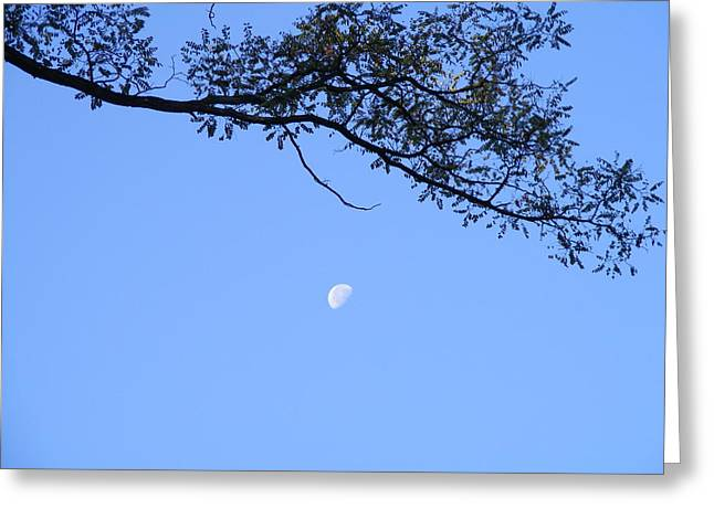 Greeting Card featuring the photograph Moon by Bogdan Floridana Oana