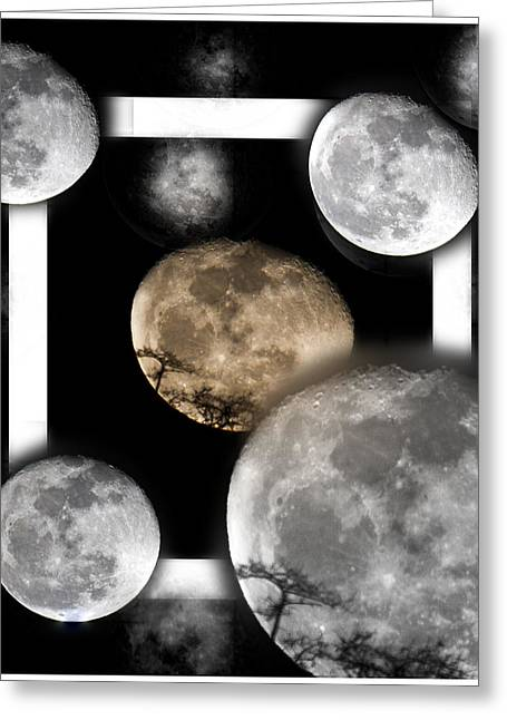 Moon From The Country Greeting Card by Betsy Knapp