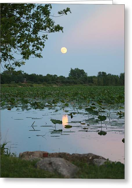 Moon Over Amana Greeting Card
