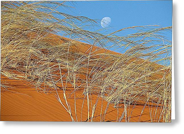 Moon Over Dune Greeting Card