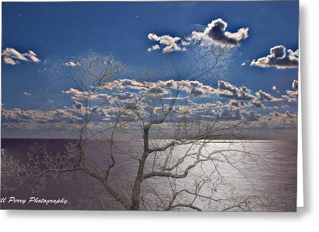 Moon Over The Water Greeting Card by Bill Perry