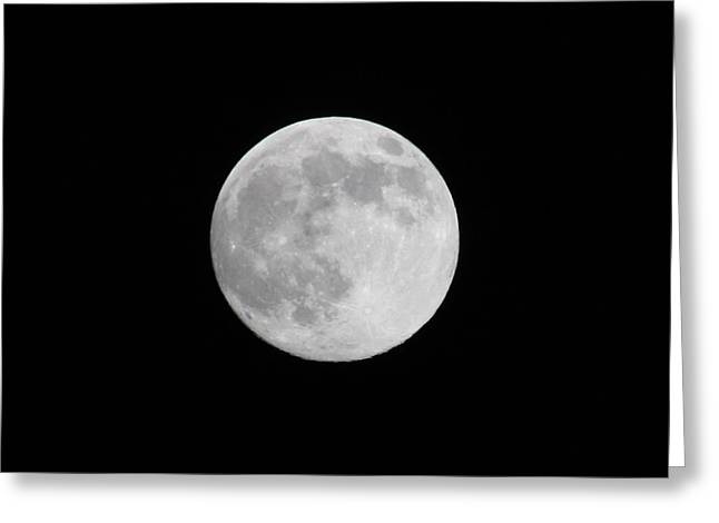 Moon Time Greeting Card by Cathie Douglas