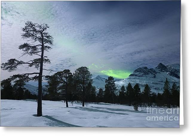 Moonlight And Aurora Borealis Greeting Card by Arild Heitmann
