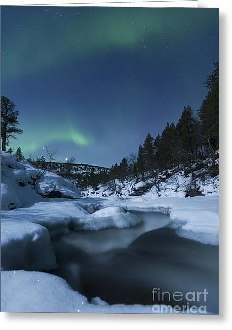Moonlight And Aurora Over Tennevik Greeting Card by Arild Heitmann