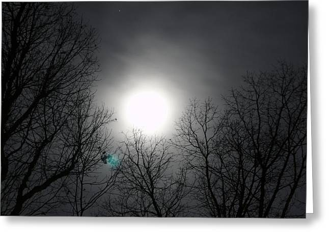 Moonlight Carolina Greeting Card