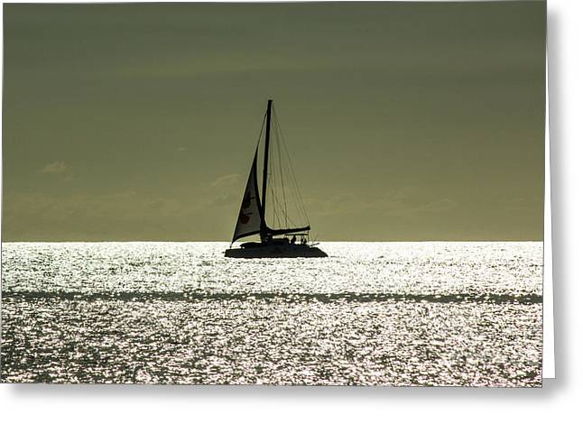 Moonlight Sail Greeting Card by Rene Triay Photography