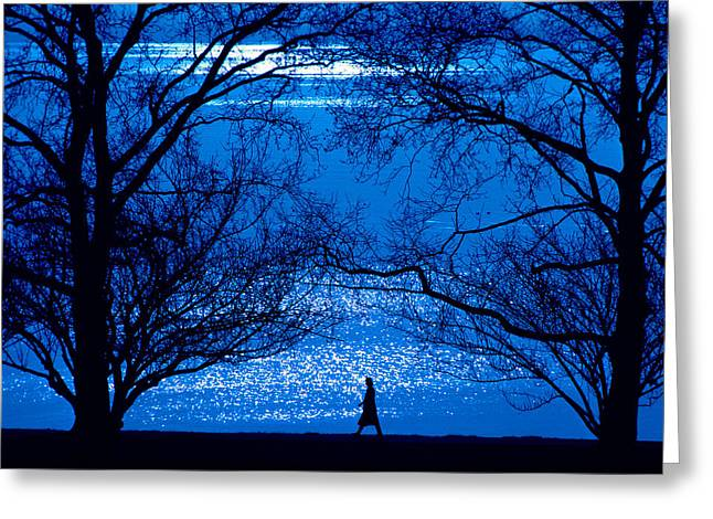 Greeting Card featuring the photograph Moonlight Stroll by Mike Flynn