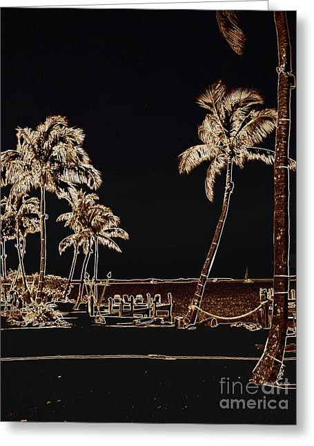 Moonlit Palms Greeting Card by Rene Triay Photography