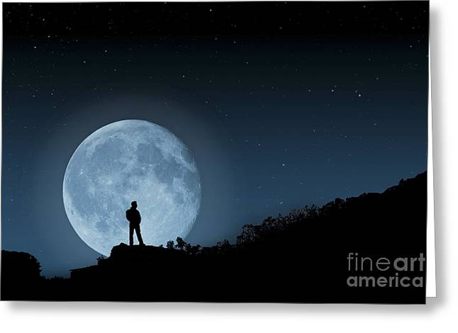 Moonlit Solitude Greeting Card by Steve Purnell