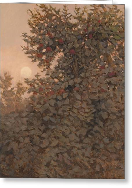 Moonrise In The Orchard Greeting Card by Peter  Campbell