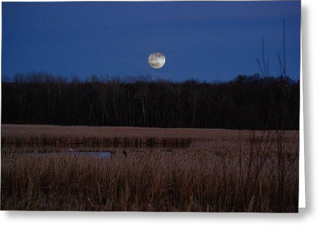 Moonrise Greeting Card by Steven Clipperton