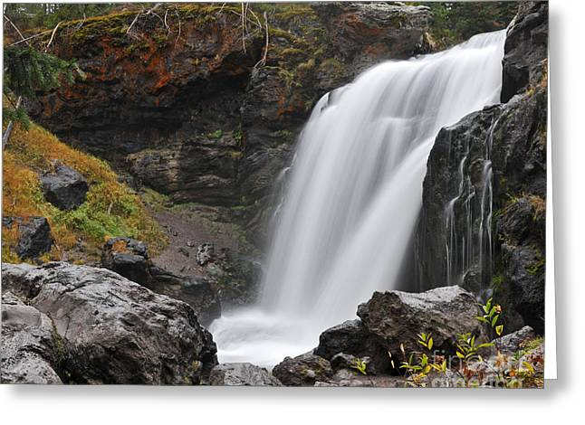 Moose Falls Yellowstone National Park Nature Waterfall Greeting Card
