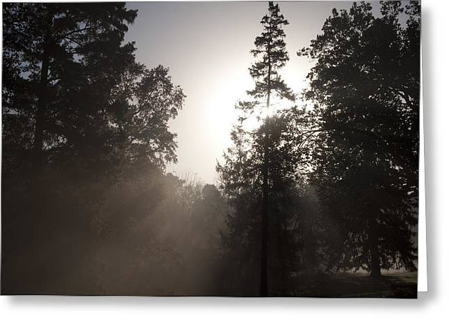 Morning At Valley Forge Greeting Card by Bill Cannon