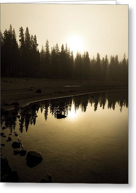 Greeting Card featuring the photograph Morning Calm by Randy Wood