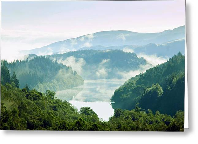 Morning Delight. Trossachs National Park. Scotland Greeting Card by Jenny Rainbow