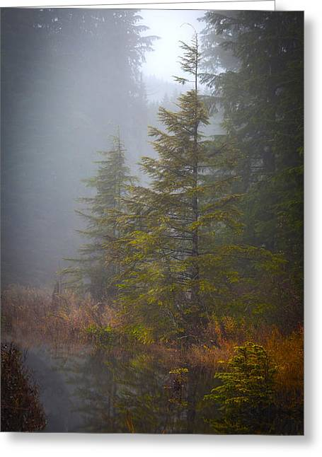 Morning Fall Colors Greeting Card by Mike Reid