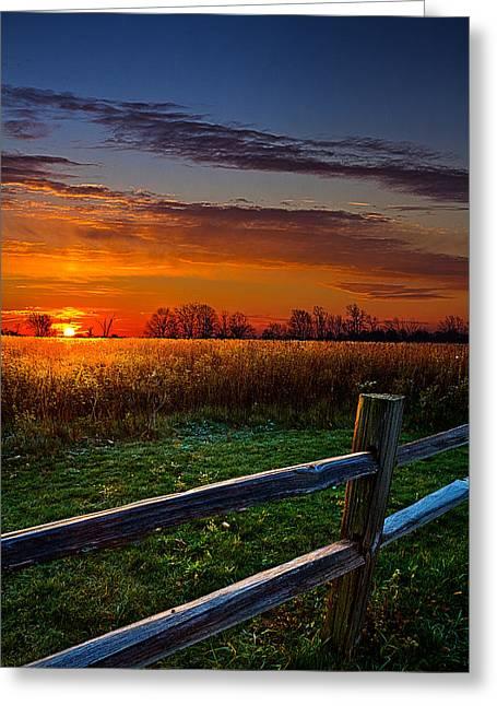 Morning Fresh Greeting Card by Phil Koch