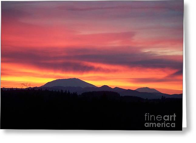 Greeting Card featuring the photograph Morning Glow by Chalet Roome-Rigdon