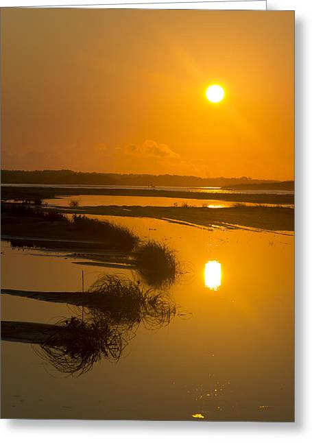 Morning Gold Greeting Card by Alan Raasch