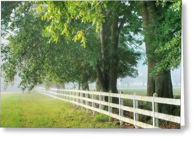 Morning Light Hdr - 2 Greeting Card by Mary Hershberger