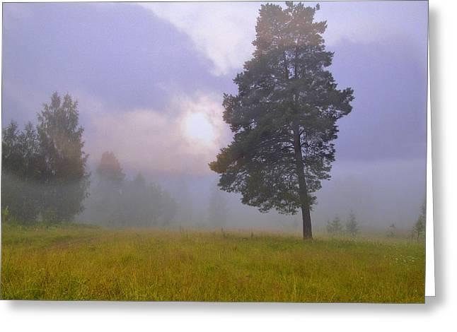 Morning Ligut-3 Greeting Card by Vladimir Kholostykh