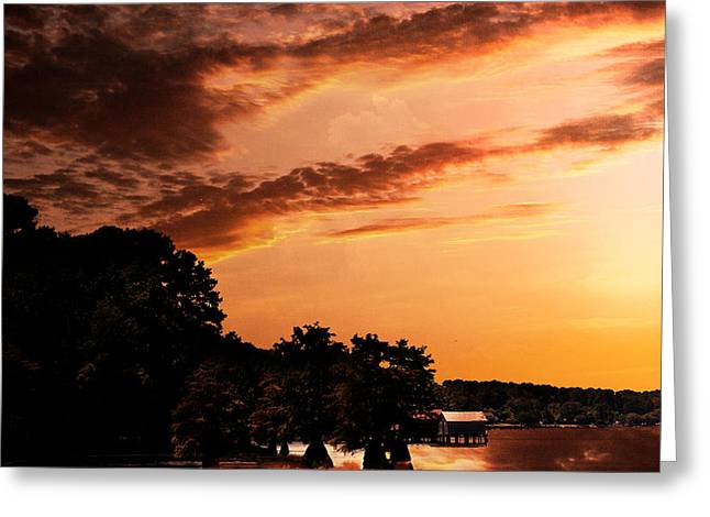Morning On The Bayou Greeting Card by Barry Jones