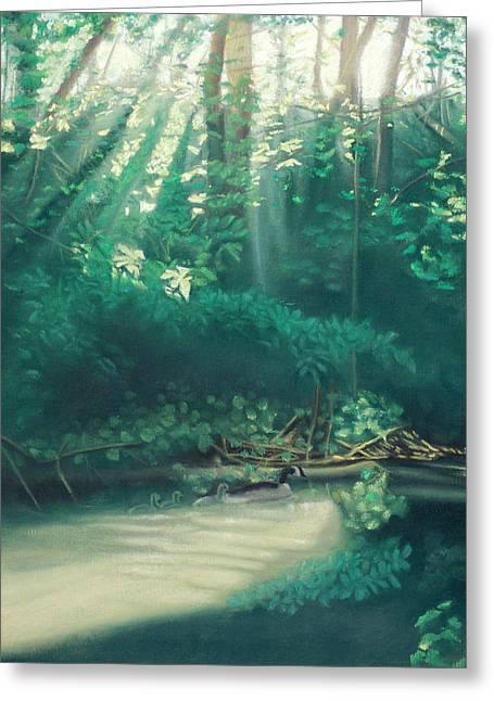 Morning On The Creek Greeting Card by Bernadette Kazmarski