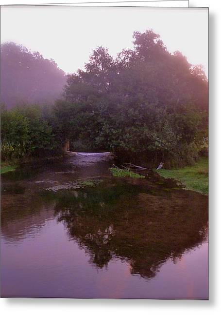 Morning Reflection Greeting Card by Karen Grist