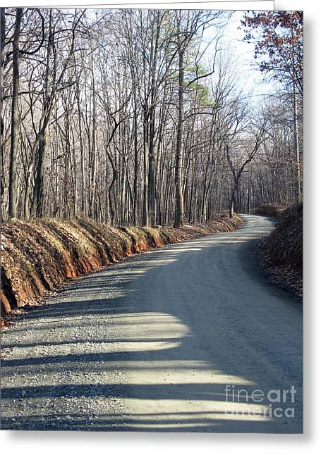 Morning Shadows On The Forest Road Greeting Card by Ausra Huntington nee Paulauskaite