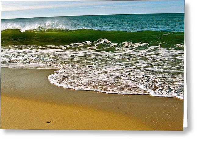 Morning Shore Greeting Card