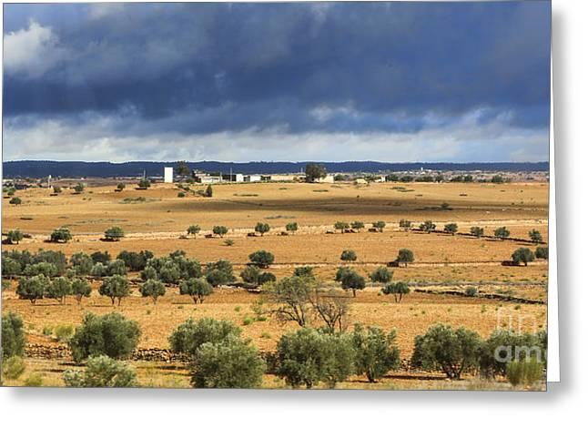 Morocco Landscape IIi Greeting Card