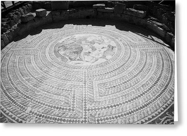 Mosaics On The Floor Of The House Of Theseus Roman Villa At Paphos Archeological Park Cyprus Greeting Card by Joe Fox