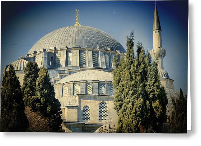 Mosque Magnificent Greeting Card by Joan Carroll