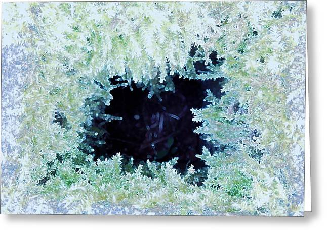 Greeting Card featuring the photograph Moss Geode by Renee Trenholm