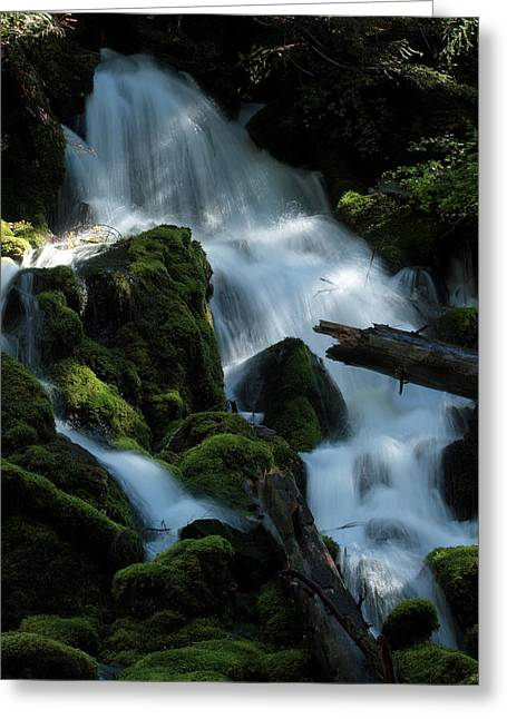 Mossy Cascades Greeting Card by Harry Snowden