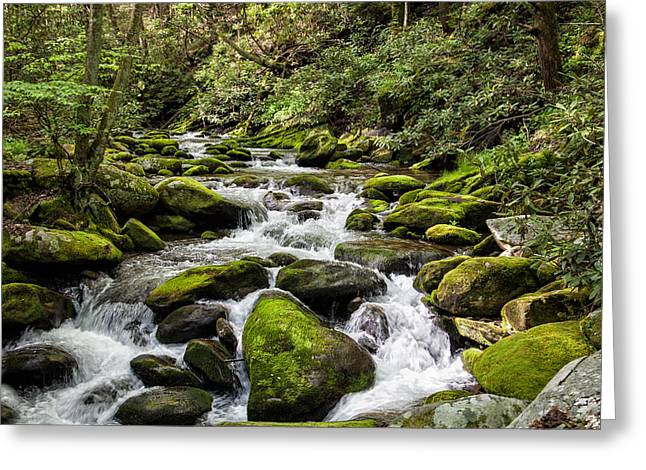 Mossy Creek Greeting Card