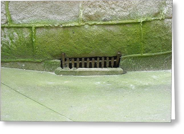 Mossy Grate Greeting Card by Christophe Ennis