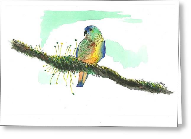 Mossy Parakeet Greeting Card by Ricky Fitzpatrick