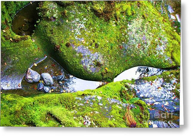 Greeting Card featuring the photograph Mossy Rocks And Water Reflections by Michele Penner