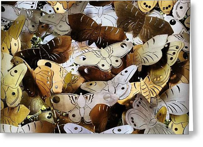 Moths Greeting Card by Natasha Futcher