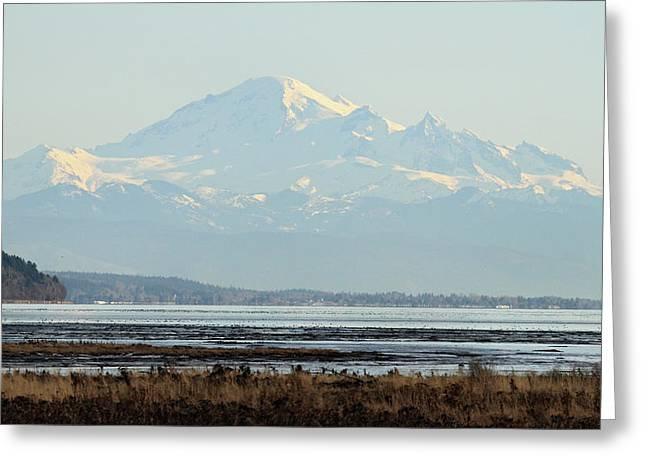 Mount Baker From Boundary Bay Greeting Card by Pierre Leclerc Photography
