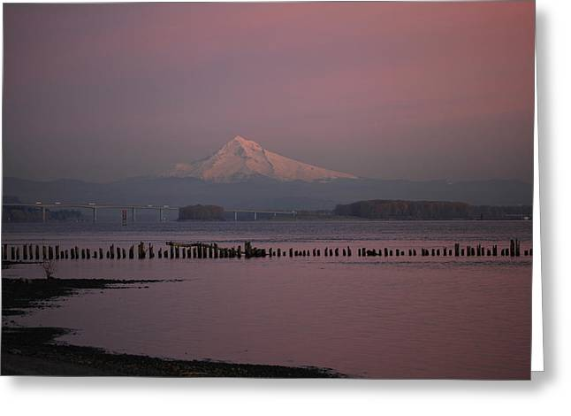 Mount Hood And Columbia River Oregon Washington Greeting Card by Sam Amato